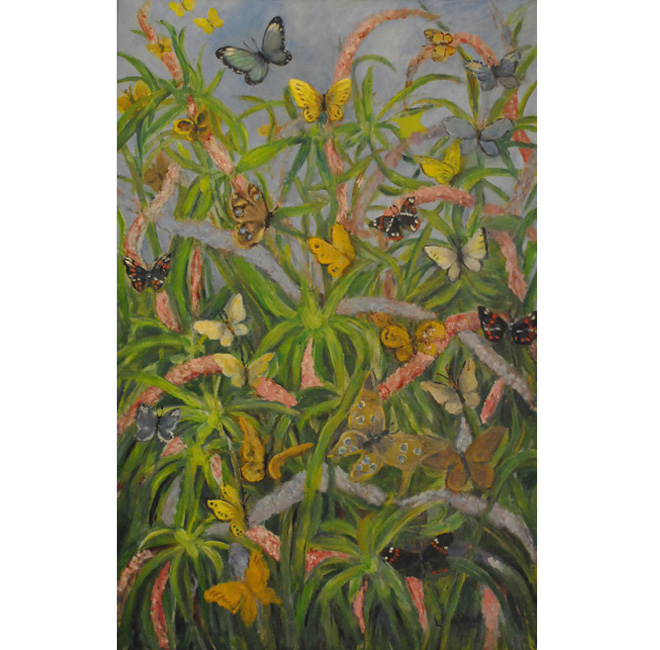 Butterflies and flowers <span>DALY/STEUBE FAMILY</span>