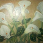 White Calla Lilies <span>WILLIAM H.DALY</span>