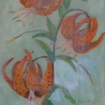 Tiger Lilies <span>COLIN STAIRS</span>